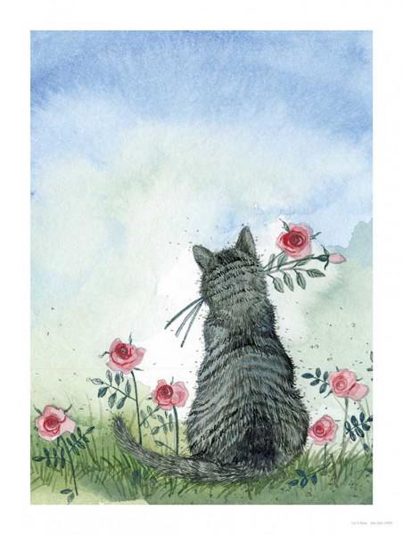 Alex Clark Bild Cat&Roses