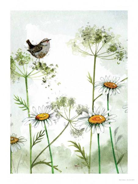 Alex Clark Bild Birds&Flowers